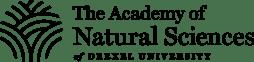 new_academy_logo-1024x250